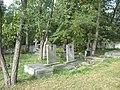 Węgów cmentarz ewangelicko-augsburski2.JPG