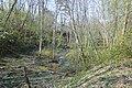 WMEE-exp2019-(080) Kolga jõgi.jpg