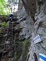 Waldegger Steig 01.jpg