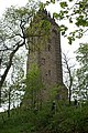 Wallace Monument - geograph.org.uk - 1294653.jpg