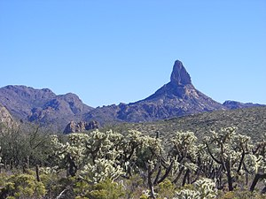 Lost Dutchman's Gold Mine - In many versions of the story, Weaver's Needle is a prominent landmark for locating the lost mine.