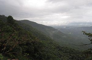 Chandgad - A major Bio-diversity hotspot, Western Ghat near Chandgad