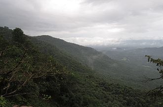 Chandgad - A major Bio-diversity hotspot, Western Ghat near Chandgad