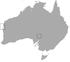 Western Barred Bandicoot area.png