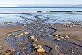 Whites Beach, Marlborough Region, New Zealand 09.jpg