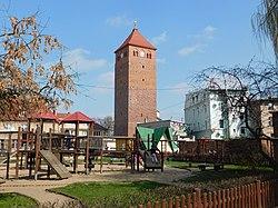 Wieża Głogowska, Góra.jpg