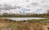 Wijnjeterper Schar, Natura 2000-gebied provincie Friesland 15.jpg