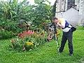 Wikipédia takes Amboise - Flowers.JPG