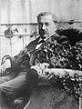 Wilhelm Schulthess.jpg