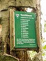 WittenbergenerHeide-14.jpg
