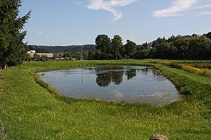 Wołkowyja - Pond 01.jpg