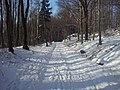 Wokół Ślęży w zimie - panoramio.jpg