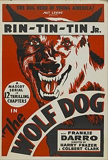 <i>The Wolf Dog</i> 1933 American film series
