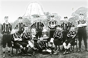 1893 FA Cup Final - The victorious Wolves team