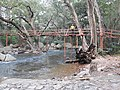 Wooden bridge-4-thalaiyanai-kalakad-tirunelveli-India.jpg