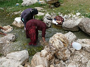 Oriental rug - Qashqaï women washing wool in the spring of Sarab Bahram (Cheshm-e Sarab Bahram), region of Noorabad, Fārs province, Iran