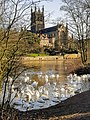 Worcester Cathedral 20190211 140322 (33747098048).jpg