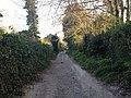 Worthing, UK - panoramio (110).jpg