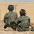 YPJ fighters overlooking hill.jpg