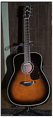Yamaha Guitar Acoustic Rotted Oak Front