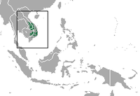 Yellow-cheeked Gibbon area.png