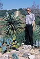 Yucca treculiana in cultur Bobby Crabb TX B.jpg