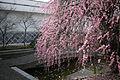 Yumeji Art Museum05n4000.jpg