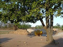 ZambianSchool5.JPG