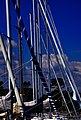 Zealand 2014-06-01 (14181111520).jpg