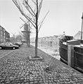 Zicht op Noordvest met stellingmolens en Noordvestsingel - Schiedam - 20342570 - RCE.jpg