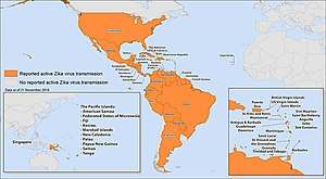 2015–16 Zika virus epidemic