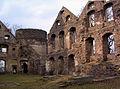 Świny zamek (22) Świny zamek. Foto Barbara Maliszewska.JPG