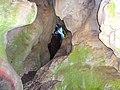 Вид на зеленый коридор в пещере Казачий стан.jpg