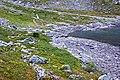 Восточная сторона подхода к перевалу Южный Чоргорр - panoramio.jpg