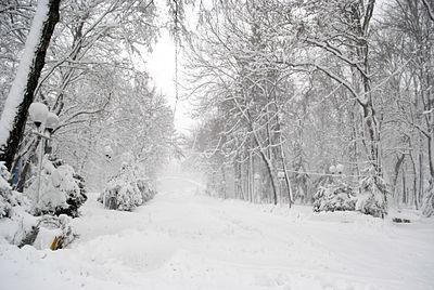 Вінниця - центральний парк 06.JPG