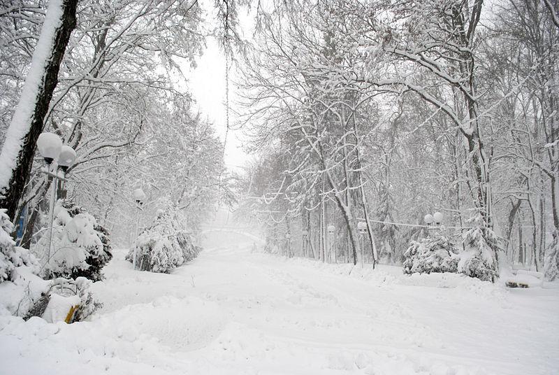 File:Вінниця - центральний парк 06.JPG
