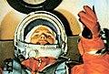 Гагарин в корабле.jpg