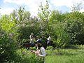 Дендрологічний парк 114.jpg