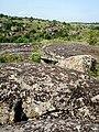 Національний природний парк «Бузький Гард», літо, ранок.jpg