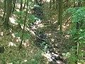 Невицький замок - літній табір вид з підвісного моста.JPG