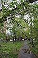 Ограниченный участок зелёных насаждений в районе трамвайного кольца по ул. Дальнеключевской.jpg
