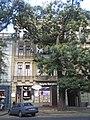 Одеса Преображенська вул. 58 DSCN0759.jpg