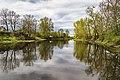 Река Ижора.jpg