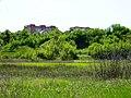 Северная окраина горы Маяк - Northern side of Mayak Hill - panoramio.jpg
