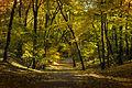Стрийський парк, осінь 02.JPG