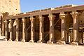 أعمدة متتالية من معبد فيله.jpg