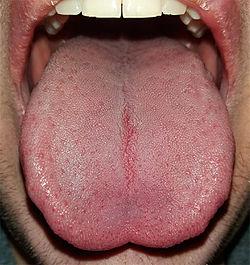 Hår på tungen