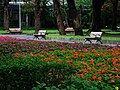 台北新公園 Taipei New Park - panoramio.jpg
