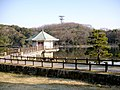 山田池公園 - panoramio.jpg