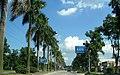 广东省江门市S271公路景色 - panoramio (52).jpg
